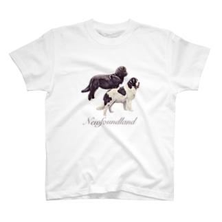 ニューファン Newfoundland T-shirts