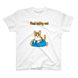 茶トラの子猫 T-shirts