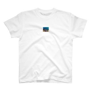 シュノーケリング T-shirts
