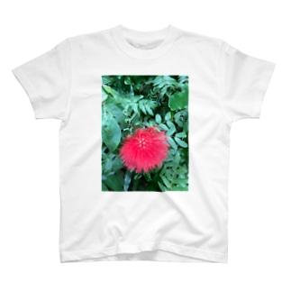 レフア T-shirts