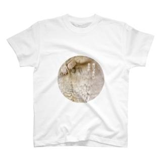 飛びつきたいおなか T-Shirt