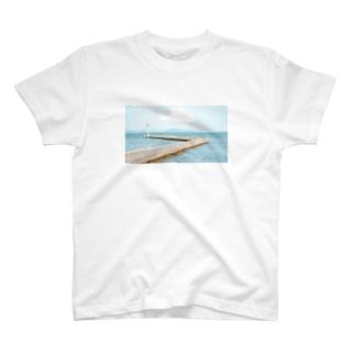 HENMO DESIGN TSHIRTSのToudai T-Shirt
