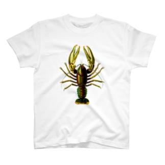 マダガスカルザリガニ T-shirts