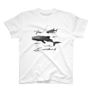 サメ・サメ T-shirts
