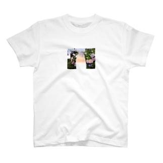 オオツキカエデの紫陽花と夕焼け T-shirts