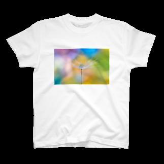 まゆにゃんΣ[【◎】]ω・´)のカラフル T-shirts