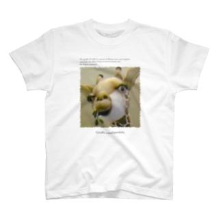 キリンです。 T-shirts