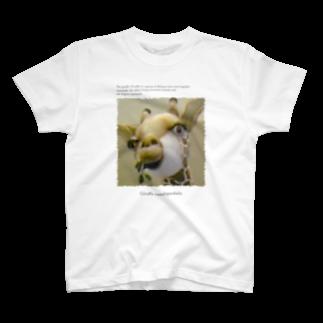 YamasakiMasakiのキリンです。 T-shirts