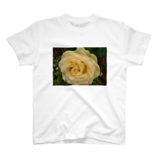 混ざり薔薇Ⅰ T-shirts