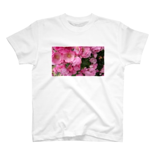 群集う桃薔薇。 T-shirts