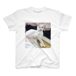 キレてるしらす T-shirts