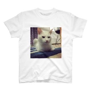 キレてるしらす(その2) T-shirts