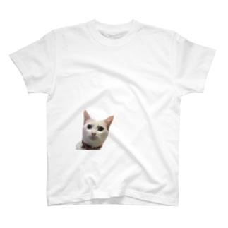 しらすの真顔 T-shirts