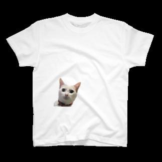 hitsmeeのしらすの真顔 T-shirts