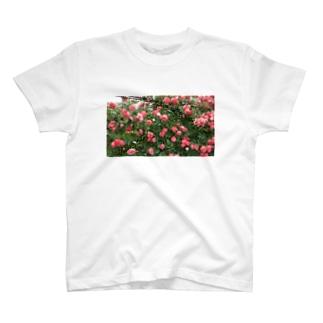 群れ薔薇 T-Shirt