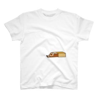 フェレット箱 T-shirts