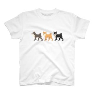 シバホリック(行進) T-shirts