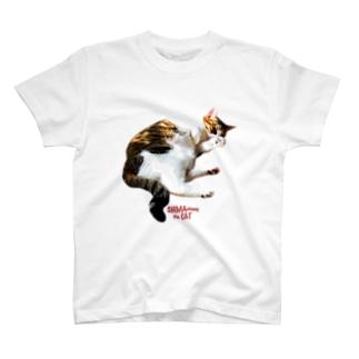 SHIMA chang the CAT2 T-shirts