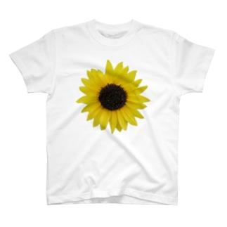 ひまわり! T-Shirt