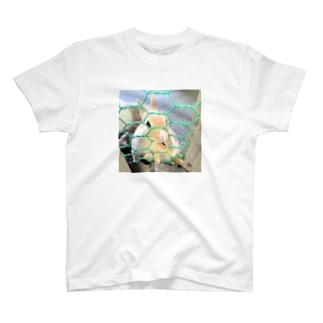 うさぎ T-Shirt