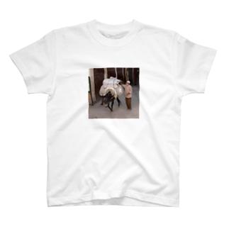 モロッコのロバ2 T-shirts