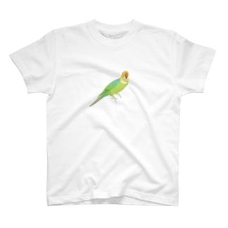 カロライナインコ(小) T-shirts