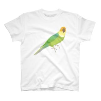 カロライナインコ(大) T-shirts