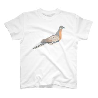 リョコウバト(大) T-shirts