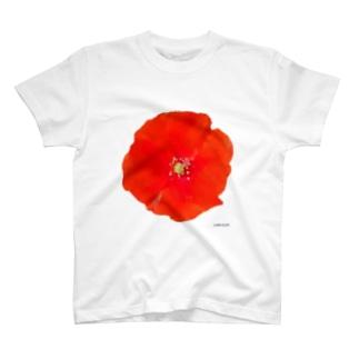 שושן T-shirts
