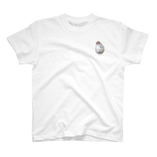 白文鳥のおもち T-shirts