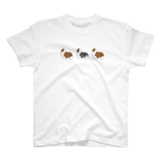 シェルティー  セーブル✖︎2 マール T-Shirt