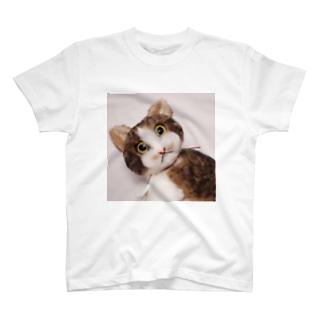 キジ白さん T-shirts