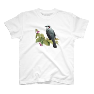 ヒヨドリとさくらんぼ T-Shirt