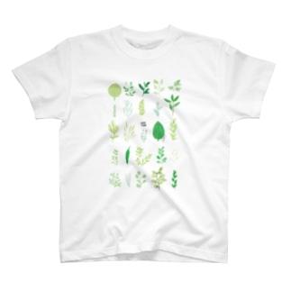 葉っぱ T-Shirt
