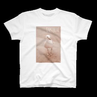 フォーヴァの鳥1-taisteal-タシテル- T-shirts