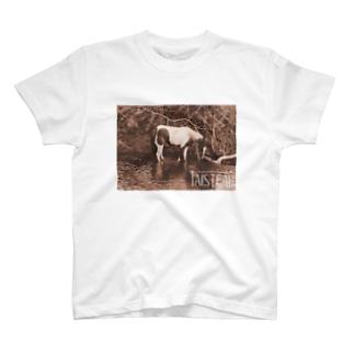 馬2-taisteal-タシテル- T-shirts