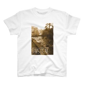 アイルランド1-taisteal-タシテル- T-shirts