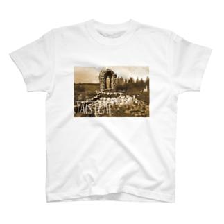 アイルランド2-taisteal-タシテル- T-shirts