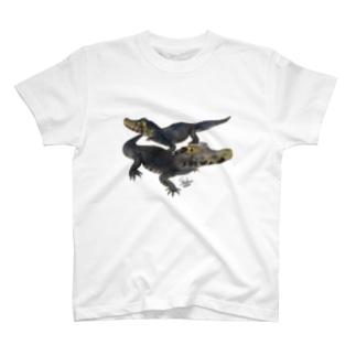 コビトカイマン&ブラジルカイマン T-shirts