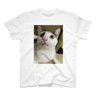信ちゃん何?Tシャツ T-shirts