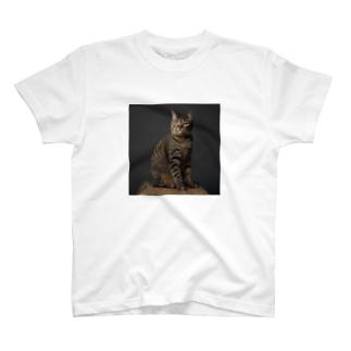 toraneko「にゃたろう」ポートレイト T-Shirt