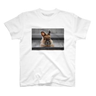 母ちゃん T-Shirt