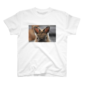 半分父ちゃん T-Shirt