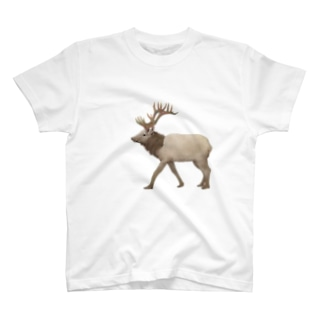 切なRendeer T-shirts
