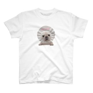 願いは叶うTシャツ【フレンチブルドッグ】 T-shirts