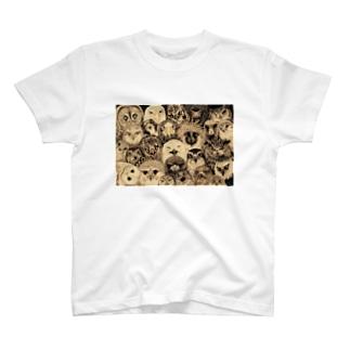 猛禽類詰め合わせ T-shirts