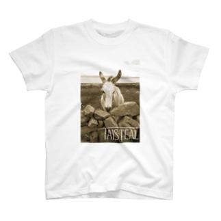 ロバ1-taisteal-タシテル- T-shirts