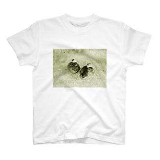 鳥1-taisteal-タシテル- T-shirts