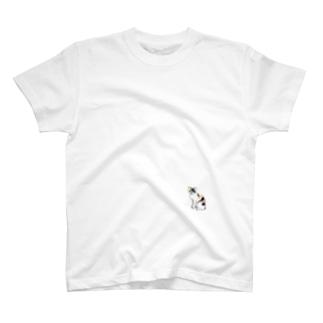 三毛猫 T-shirts