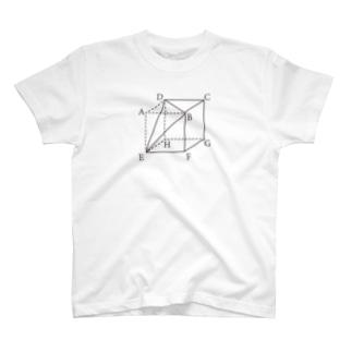 数学の問題1 T-shirts
